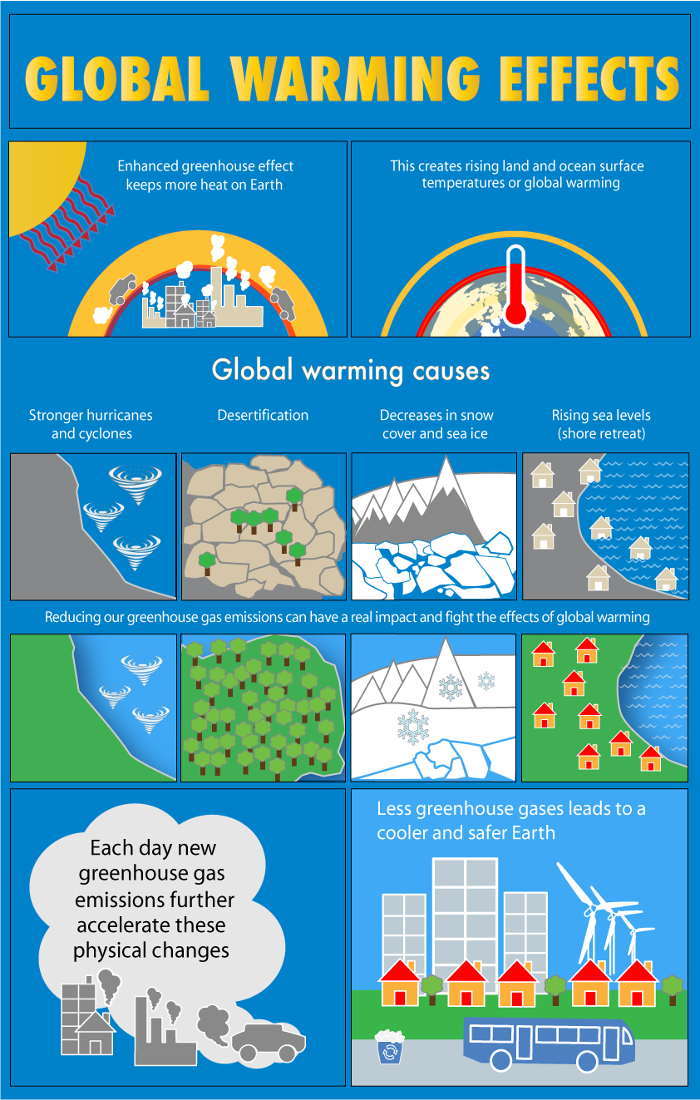 Infographic The effects of global warming What s Your Impact What s ...